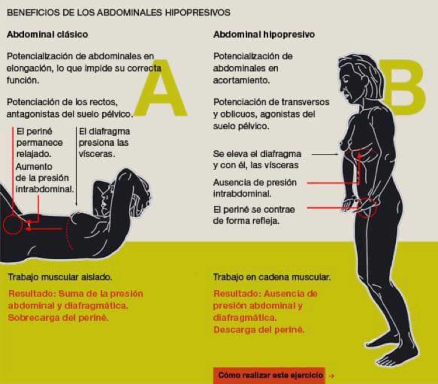 diastasis-abdominal-3